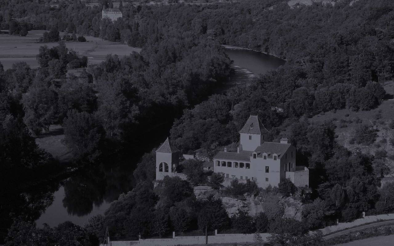 Castle on the banks of the Dordogne