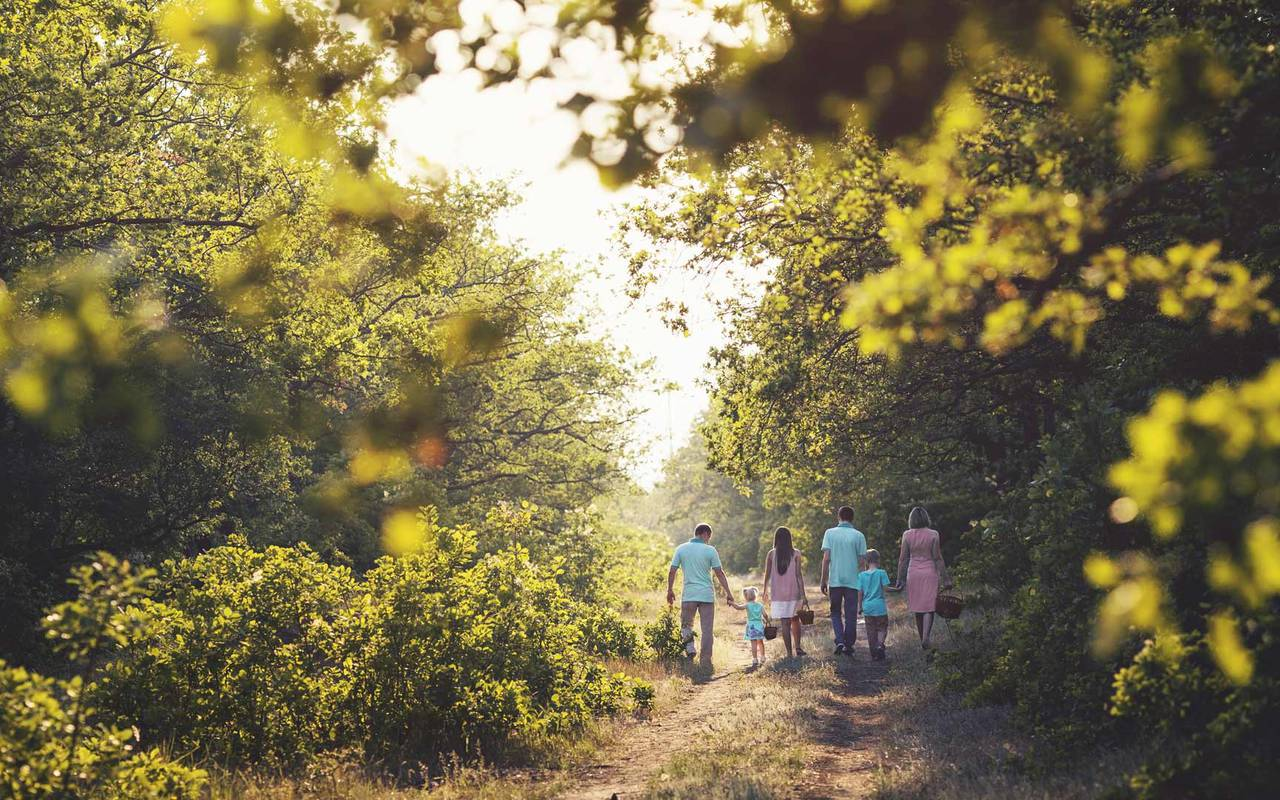 Family walk in the forest - luxury hotel sarlat