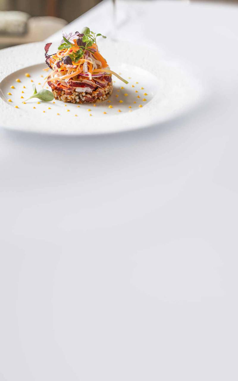 Gourmet plate - hotel dordogne
